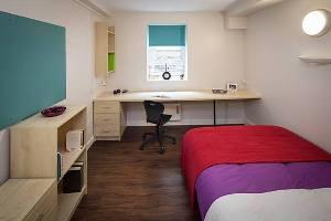 Инвестиции в студенческое жилье